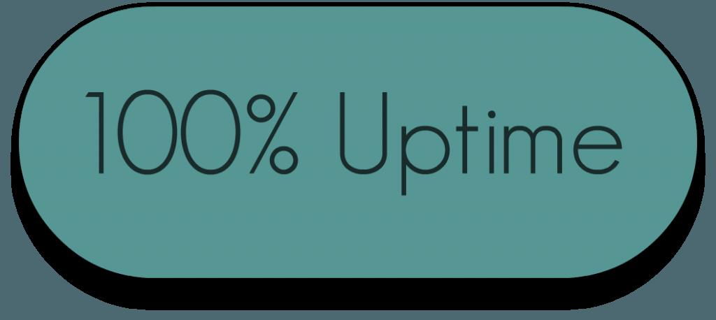 100% Uptime