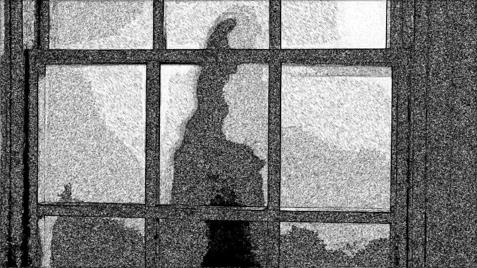 Shadow in Window